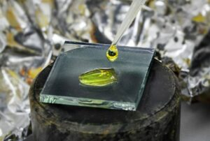 Figure 2. National Renewable Energy Laboratory (NREL) Senior Scientist Kai Zhu applies a dye-sensitized precursor solution to make a perovskite cell. (Photo by Dennis Schroeder/Released)