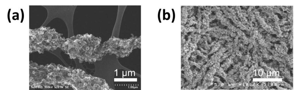 Figure 4. SEM micrographs of: (a) a single Pt/C/Nafion/PAA electrospun fiber (courtesy of Karren More at Oak Ridge National Laboratory) and (b) a top-down view of an electrospun nanofiber cathode mat. (Released)