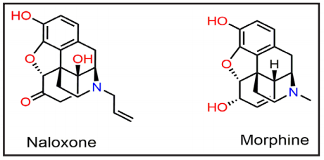 Chemical Structures of Naloxone and Morphine