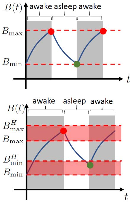 Figure 1. Illustrations of the spontaneous (top) and scheduled (bottom) sleep-wake switching. Red and green circles represent the times when the subject goes to sleep and wakes up, respectively.
