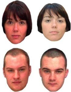 Figure 2. An example of two trials from the Glasgow Face Matching Test. The top pair shows two instances of the same person (match trial), the bottom pair shows two different people (mismatch trial). (Released)