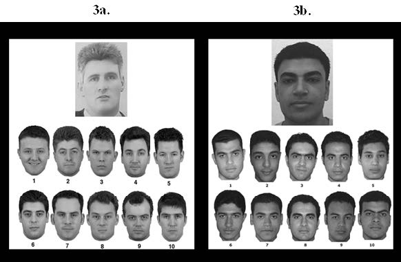 Figure 3(a). An example of a one-toten matching trial from Reference 6. In this example, the suspect pictured above the array is not present in the line-up below. Figure 3(b). An example of a one-to-ten matching trial from Reference 8. In this example, the suspect is present in the array, at position number 10. (Released)