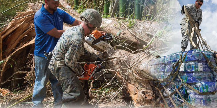 Photo Illustration created by HDIAC. Adapted from Marine Corps photo by Lance Cpl. Alexis C. Schneider (Available for viewing at http://www.jcs.mil/Media/News/ cle/1320454/jbsa-volunteers-aid-in-hurricane-maria-relief-efforts/), and Adobe Stock.